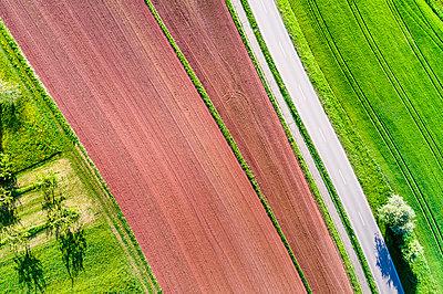 Germany, Baden-Wuerttemberg, Swabian Franconian forest, Rems-Murr-Kreis, plowed field and road - p300m1587773 by Stefan Schurr