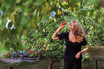 Smiling woman picking apples - p312m2080077 by Pernille Tofte