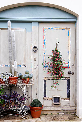 Pot plants on wrought iron metal plant stand at weathered doorway of Isle of Wight home;  UK - p349m920034 by Rachel Whiting