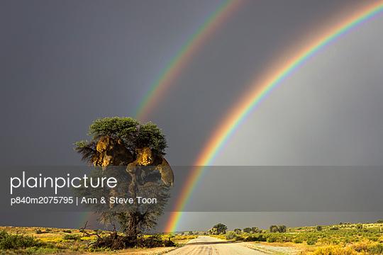 p840m2075795 von Ann & Steve Toon