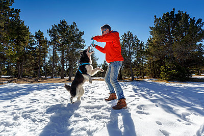 Mature man playing with dog in snow covered forest - p429m1407962 by Quim Roser