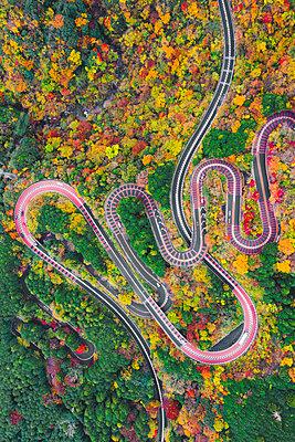 Scenic mountain road, Izu National Park, Honshu, Japan. Aerial view. - p651m2062115 by Marco Bottigelli