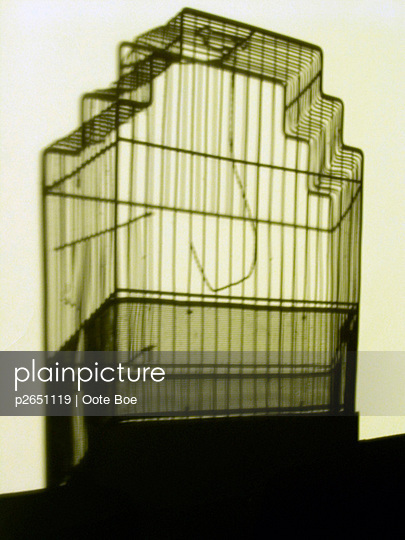 Birdcage - p2651119 by Oote Boe