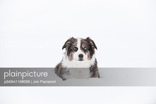 p343m1168058 von Jon Paciaroni