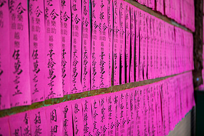 Chinese lettering on pink papers - p429m726916f by Judith Haeusler