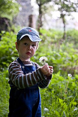 Kleiner Junge mit Pusteblume - p880m908044 von Claudia Below