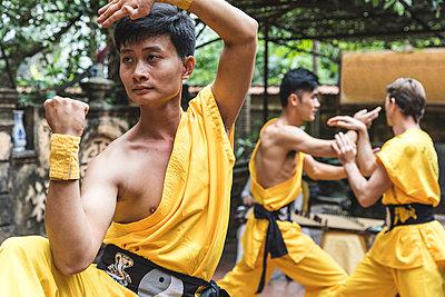Vietnam, Hanoi, man exercising Kung Fu - p300m2013210 by William Perugini