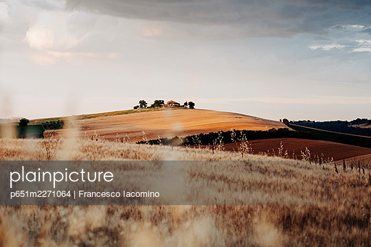 Rural scene, wheat and hills in Marche region, Central Italy. Urbisaglia, Macerata district - p651m2271064 by Francesco Iacomino