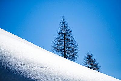 White desert - p1113m901999 by Colas Declercq