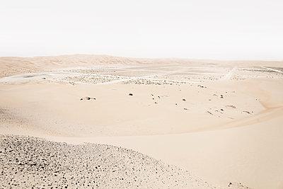 Liwa Wüste - p1217m1090678 von Andreas Koslowski