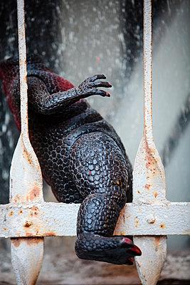 Godzilla im Fenster - p1579m2158116 von Alexander Ziegler