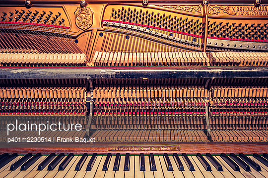 Piano - p401m2230514 by Frank Baquet