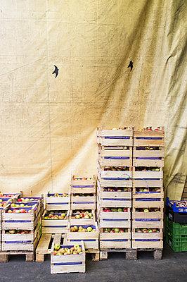 Grossmarkt - p280m1083919 von victor s. brigola