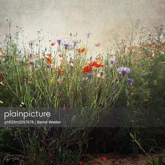 Random Places 31 - p1633m2297678 by Bernd Webler