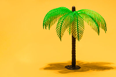 childs plastic palm tree toy - p1280m2108880 by Dave Wall