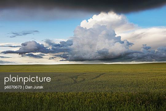 p6070673 von Dan Jurak