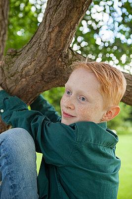 Junge klettert auf Baum - p045m1466214 von Jasmin Sander