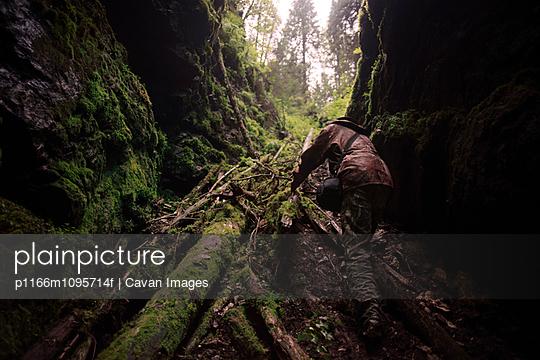 p1166m1095714f von Cavan Images