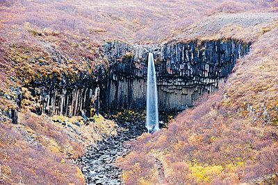 Svartifoss waterfall, Skaftafell National Park - p871m821247 by Christian Kober