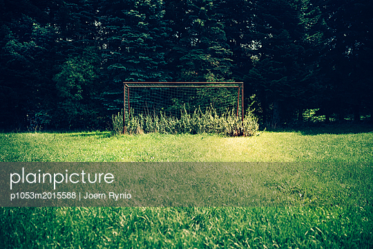 Soccer goal overgrown with weeds and grass on football field - p1053m2015588 by Joern Rynio