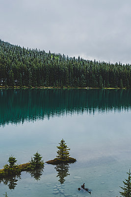 Cloudy afternoon at the Two Jack Lake in Canada - p1455m2092370 by Ingmar Wein