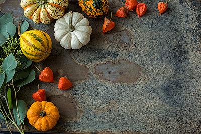 Autumnal decoration, ornamental pumpkins - p300m2042203 von JLPfeifer