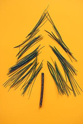 Weihnachtsbaum    - p450m2052811 von Hanka Steidle