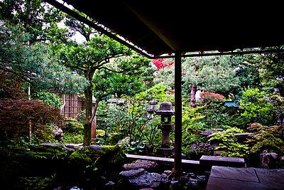 A view of the courtyard garden in the Nomura Samurai House in Kanazawa, Japan, Asia - p934m1177227 by Dominic Blewett