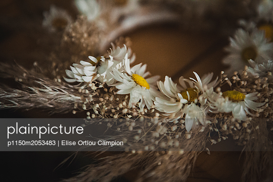 Crown of flowers - p1150m2053483 by Elise Ortiou Campion