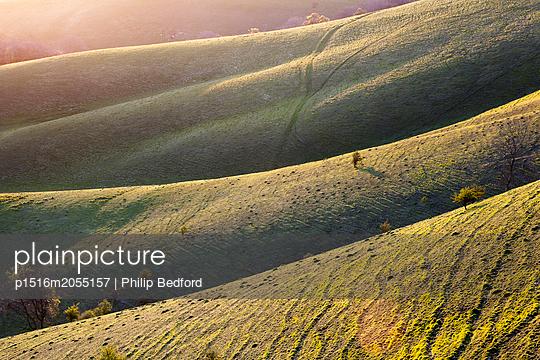 Hügel in South Downs - p1516m2055157 von Philip Bedford