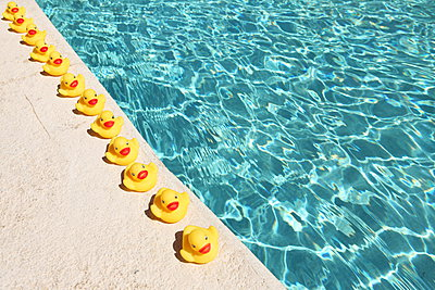 Rubber ducks - p045m902671 by Jasmin Sander