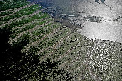 Meldorfer Bucht; östlich der Insel Pellworm - p1016m742036 von Jochen Knobloch