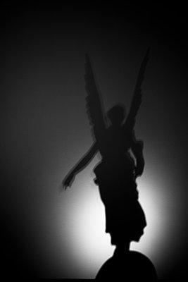 Angel shadow - p1062m1172184 by Viviana Falcomer