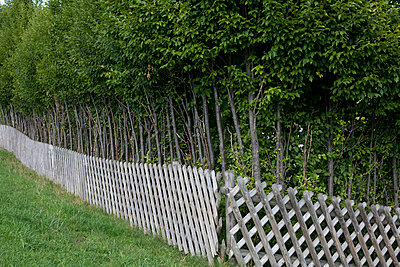 Garden fence - p212m889932 by Edith M. Balk