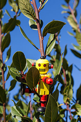 Toy robot - p1021m1537869 by MORA