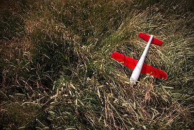 Spielflugzeug - p1222m1154535 von Jérome Gerull