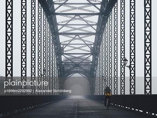Old Elbe Bridge - p1696m2292992 by Alexander Schönberg