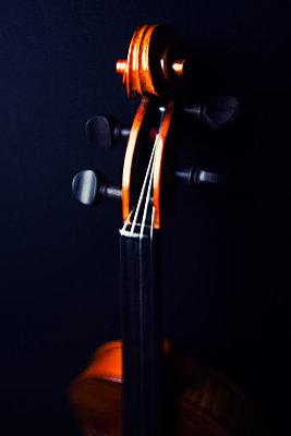 Geigenhals mit Schnecke - p3300451 von Harald Braun
