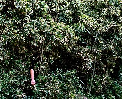 Camouflage - p453m2151370 by Mylène Blanc