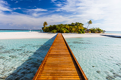 Wooden jetty to a tropical island, Maldives - p651m2033403 by Matteo Colombo photography