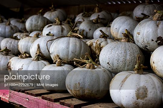 10/28/2020 - p1100m2292679 by Mint Images