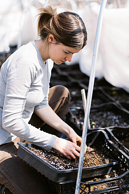 A young female farmer checking her bulb flowers in the greenhouse - p1166m2269683 by Cavan Images
