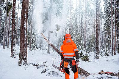 Lumberjack in forest - p312m2139345 by Hans Berggren