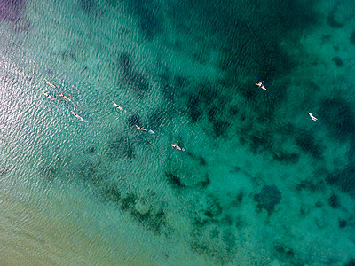 Aerial view of swimmers in Geneva Lake - p343m1475920 by Raffi Maghdessian