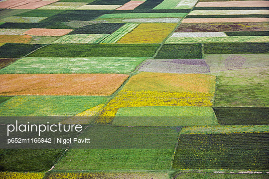 p652m1166942 von Nigel Pavitt