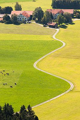 Wiesenlandschaft im Allgäu - p1079m891100 von Ulrich Mertens