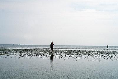 Frau im Watt vor Horizont - p347m2013839 von Georg Kühn