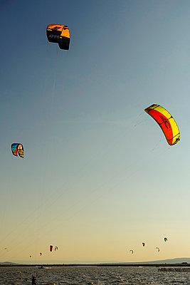 Austria, Breitenbrunn am Neusiedler See, Lake Neusiedl, kitesurfing - p300m1032882 by Karl Thomas