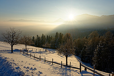 Germany, Bavaria, sunrise at Kogl at Auerberg in winter - p300m1356442 by Lisa und Wilfried Bahnmüller
