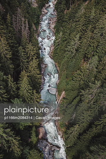 a river cuts through the forest shot from above - p1166m2084314 by Cavan Images